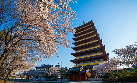 Recipe for Health and Relaxation in the Ancient Capital, Conmaul Gyeungju Oriental Hospital