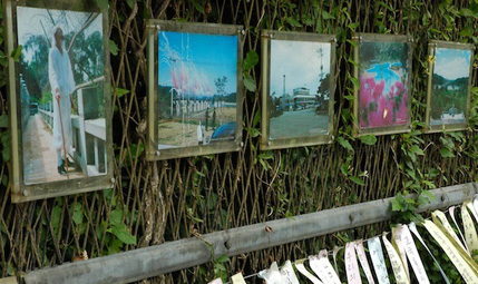 Photos are hanging on the wire fence